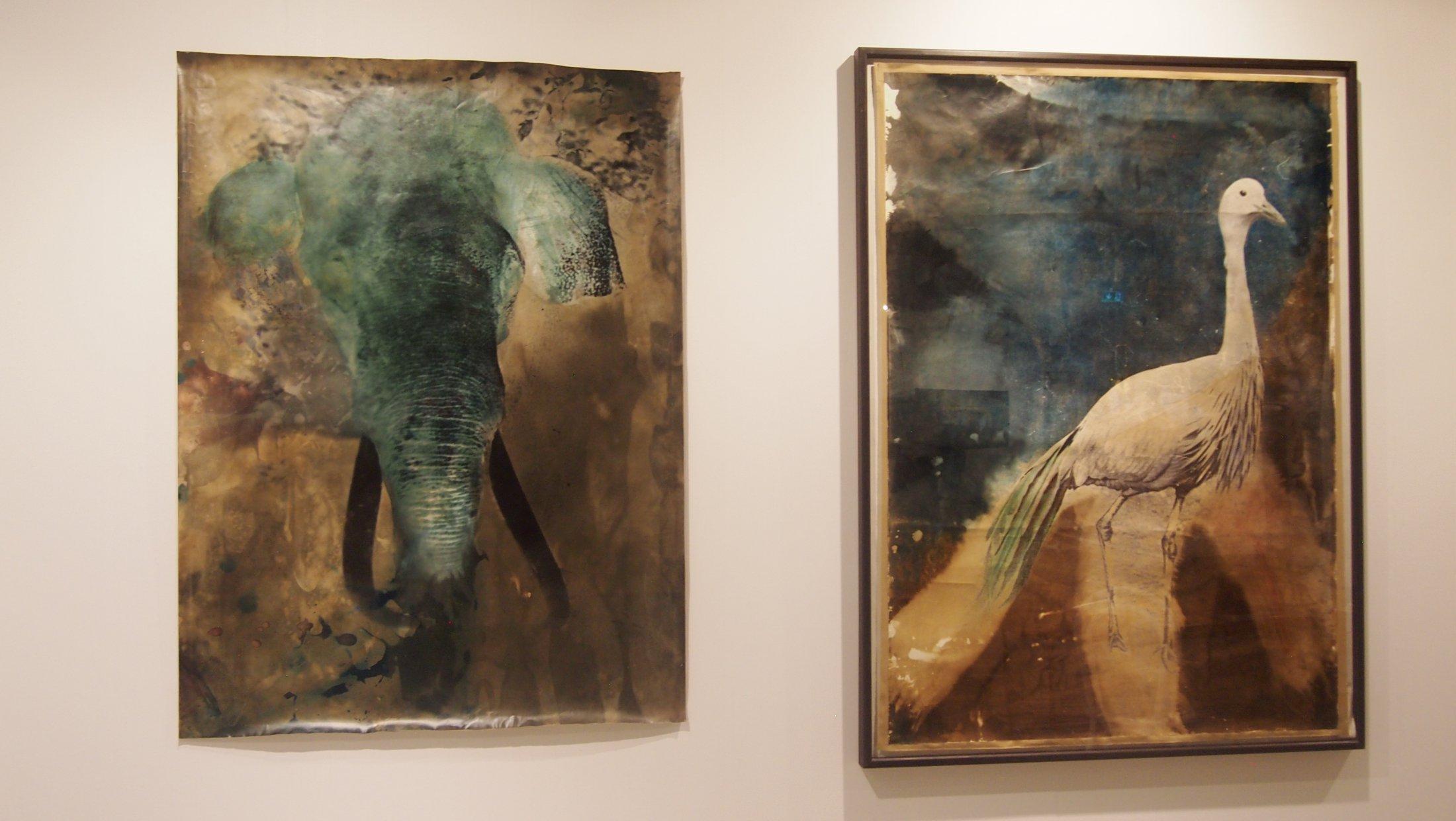 """Elefant"" & ""Reiher"", Galerie Judith Andreae"